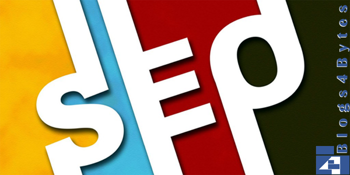 SEO by Blogs4Bytes