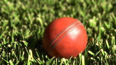 Pay and Play Cricket on Weekends #TakeBreak @WKNDGetaways -- www.wkndgetaways.com